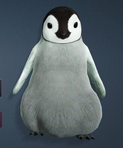 黒い砂漠ペットペンギン